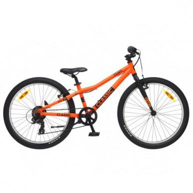 CLASSIC dviratis Team 24 2020