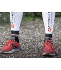 Compressport PRO Racing V3.0 Low